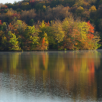 Chittening Pond 2 - October
